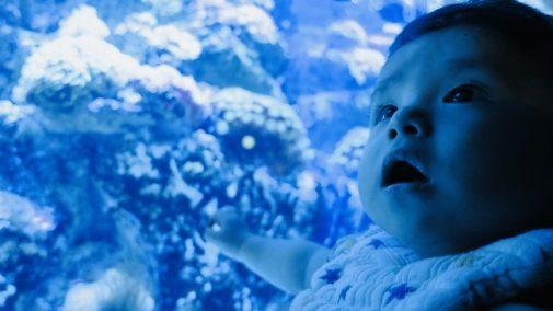 子供と水族館のイメージ画像