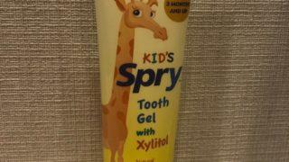 幼児・乳児・赤ちゃんの歯磨き粉のオススメ2