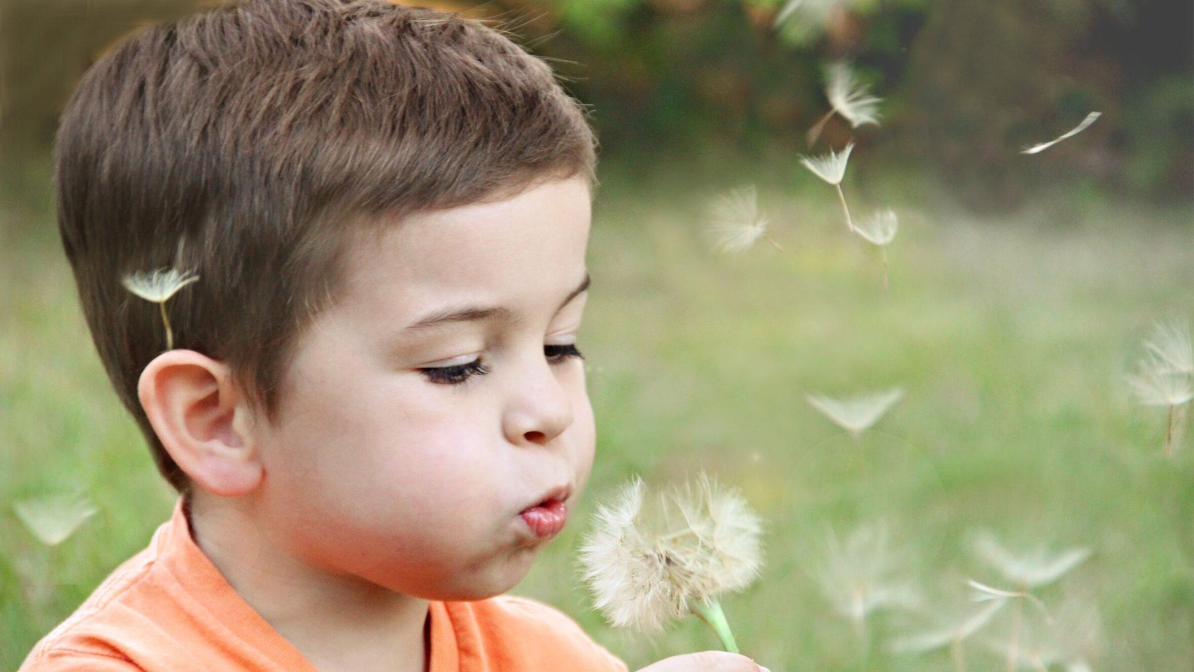 子供のいいところのイメージ画像2