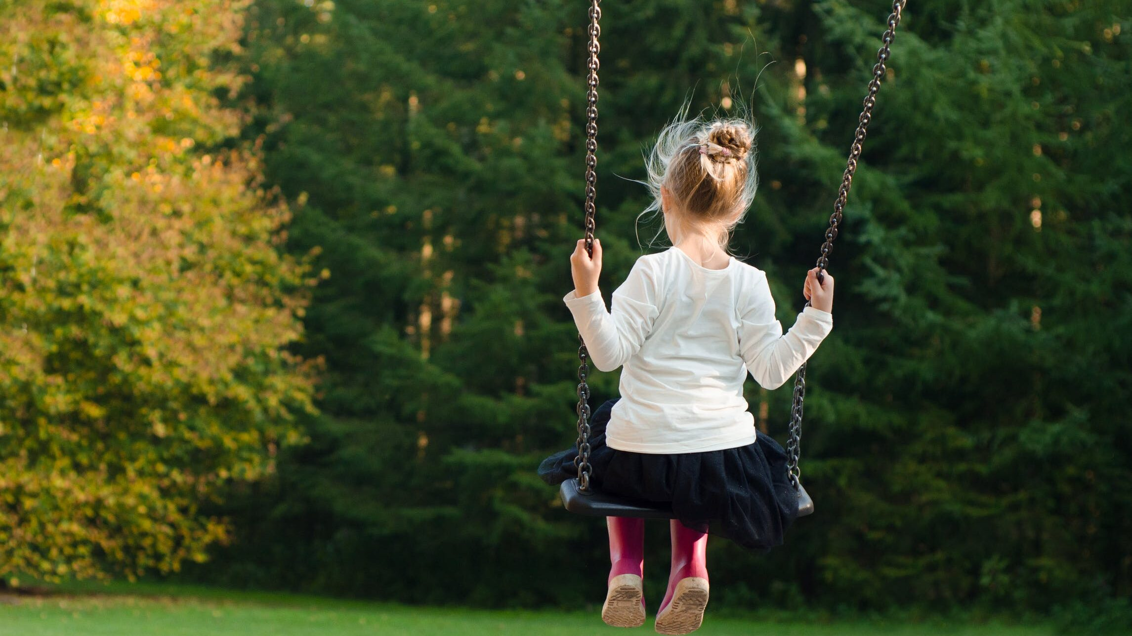 子供(幼児)が興味や関心を持つ身近なもののランキングのイメージ画像5