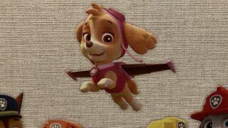 パウパトロールのスカイがかわいい!イラストの塗り絵が無料?おもちゃや服、声優や犬種のイメージ画像11