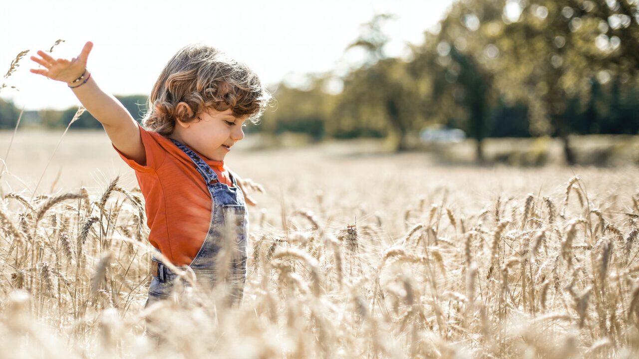 遊びを通して学ぶことや身につく能力って何?遊ぶことの大切さのイメージ画像4